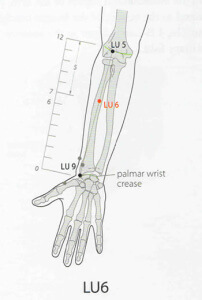acupuncture point lu-6 lu 6 lung-6 lung 6